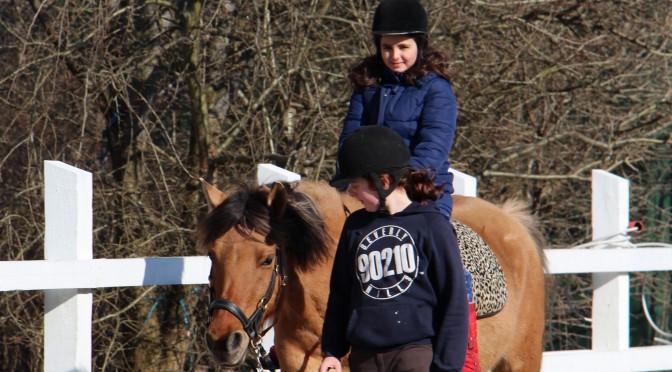 Loppemarked og ponyridning 2015
