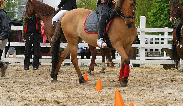 Ponygames maj 2015